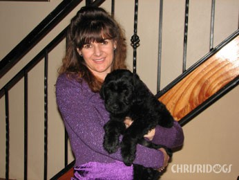 Tsar Chonga Adopted Black Russian Terrier Puppy